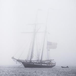 Through the Mist by Laura Marshall