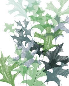 Leaf Impression II by Laure Girardin Vissian