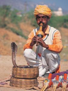 Snake Charmer, India by Lauree Feldman