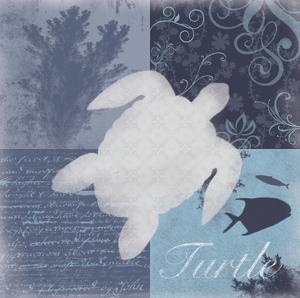 Beach Turtle by Lauren Gibbons