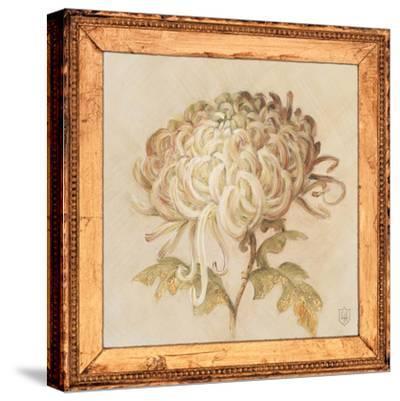 Chrysanthemum Floret Detail