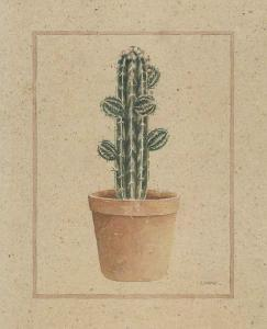 Cactus by Laurence David