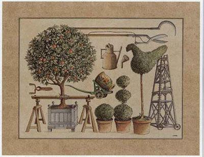 L'Art de Former les Topiaires, l'Oranger