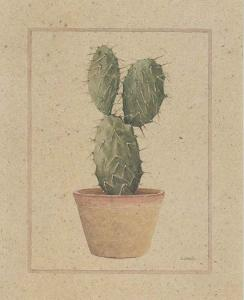 Opuntia by Laurence David