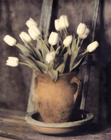Tulips on Bench by Laurie Eastwood