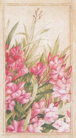 https://imgc.artprintimages.com/img/print/laurier-rose-i_u-l-em7i50.jpg?p=0