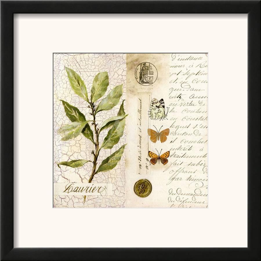 Vertu De La Lavande laurier framed art printpascal cessou | art