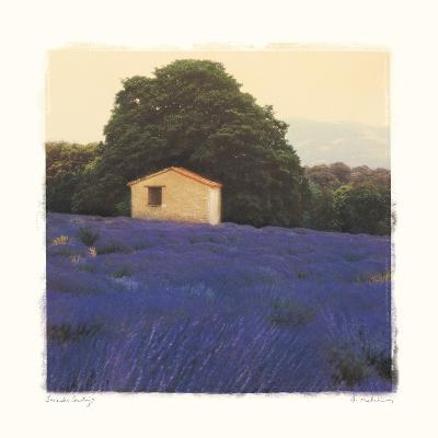 Lavender Country-Amy Melious-Premium Giclee Print