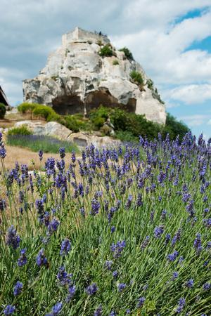 https://imgc.artprintimages.com/img/print/lavender-field-in-front-of-ruins-of-fortress-on-a-rock-les-baux-de-provence-bouches-du-rhone_u-l-pnultl0.jpg?p=0