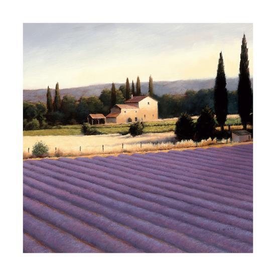 Lavender Fields II Crop-James Wiens-Art Print