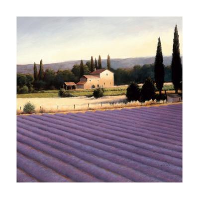 https://imgc.artprintimages.com/img/print/lavender-fields-ii-crop_u-l-pxzxme0.jpg?p=0