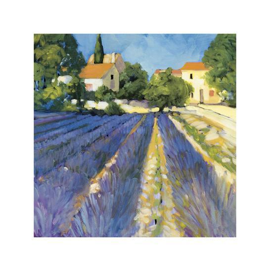 Lavender Fields-Philip Craig-Giclee Print