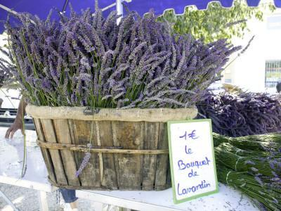 https://imgc.artprintimages.com/img/print/lavender-for-sale-at-1-euro-a-bunch-at-the-twice-weekly-famrer-s-market-in-coustellet_u-l-pd5tlm0.jpg?p=0