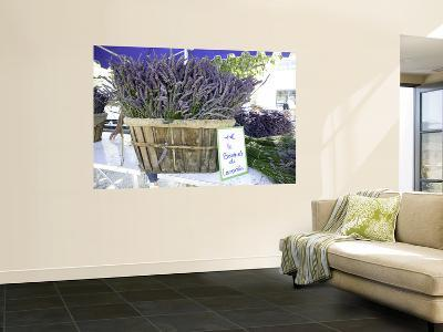 Lavender for Sale at 1 Euro a Bunch, at the Twice Weekly Famrer's Market in Coustellet-Barbara Van Zanten-Wall Mural