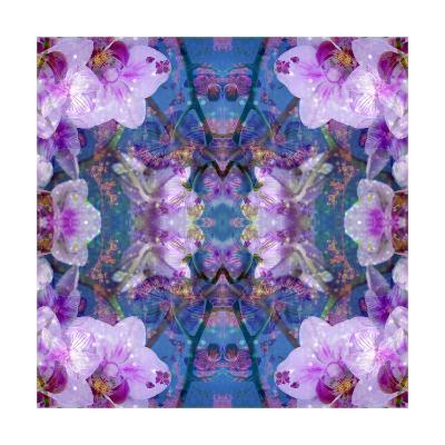 Lavender Orchid Ornament-Alaya Gadeh-Art Print