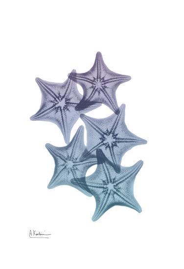 Lavender Splashed Starfish 1-Albert Koetsier-Art Print