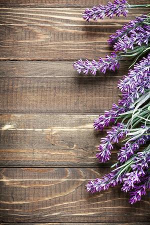https://imgc.artprintimages.com/img/print/lavender_u-l-q1037on0.jpg?p=0