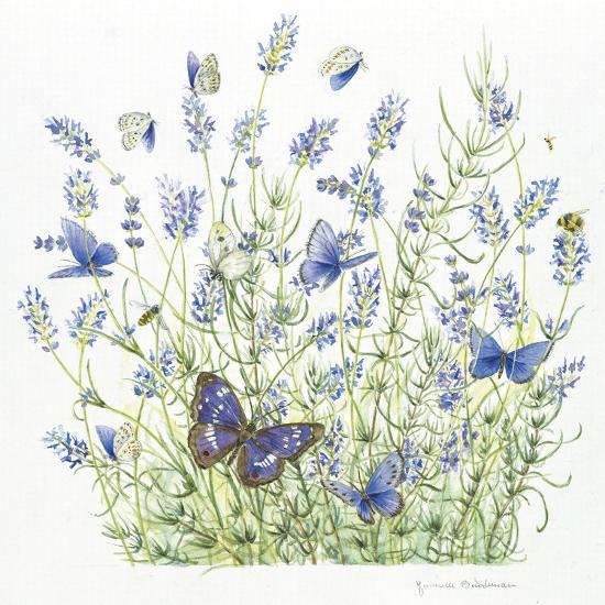 Lavender-Janneke Brinkman-Salentijn-Giclee Print