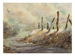 Posts in Sunshine by LaVere Hutchings