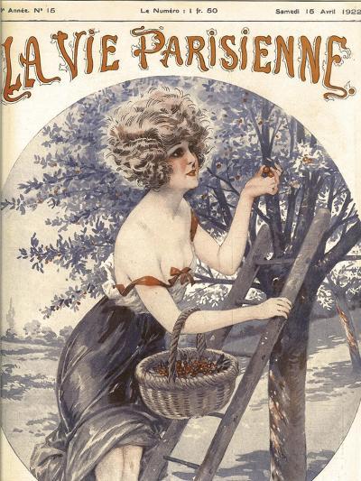 Lavie Parisenne Cherry Picking--Giclee Print