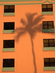 Palm Tree Shadow on Building Facade in the Art-Deco District of South Beach, Miami, Florida, USA by Lawrence Worcester