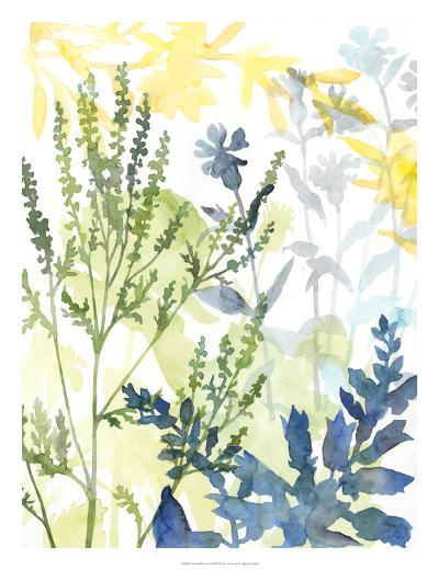 Layered Blooms I-Megan Meagher-Giclee Print