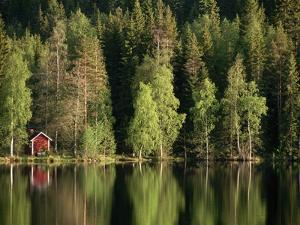 Sauna House at Edge of Forested Lake by Layne Kennedy