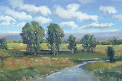 Lazy River Day I-Tim OToole-Art Print