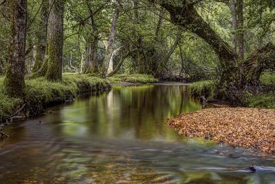 Lazy River-Joe Reynolds-Photographic Print