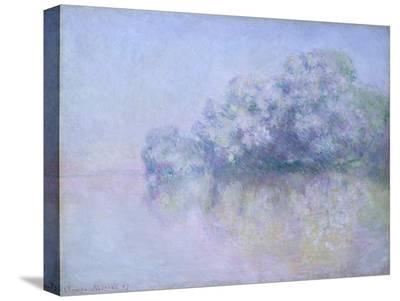 ?le aux Orties near Vernon, 1897-Claude Monet-Stretched Canvas Print