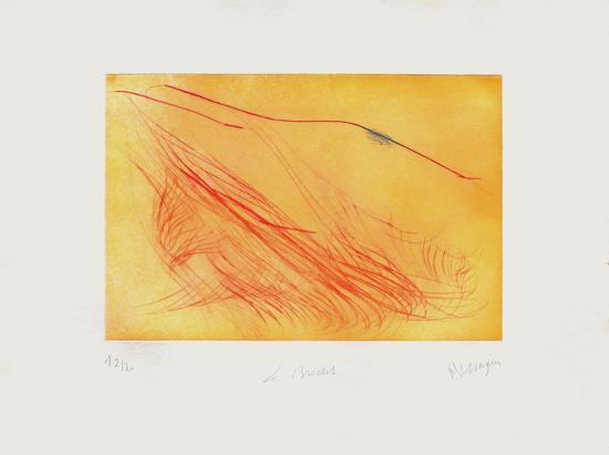 Le Brochet-Jean Messagier-Limited Edition