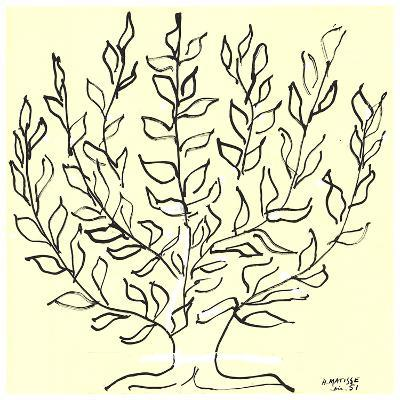 Le Buisson-Henri Matisse-Serigraph