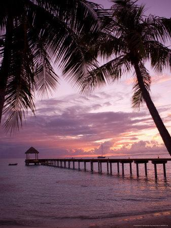 https://imgc.artprintimages.com/img/print/le-maitai-dream-fakarava-resort-fakarava-tuamotus-french-polynesia_u-l-p5ao540.jpg?p=0