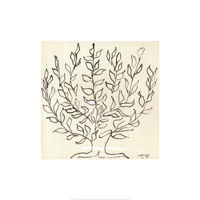 Le Platane-Henri Matisse-Art Print