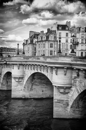 https://imgc.artprintimages.com/img/print/le-pont-neuf-paris-france_u-l-pz11mv0.jpg?p=0