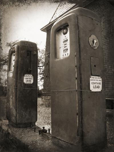 Leaded-Tina Lavoie-Photographic Print