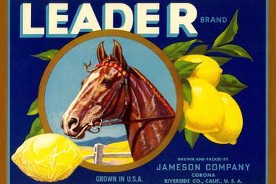 Leader Lemon Label