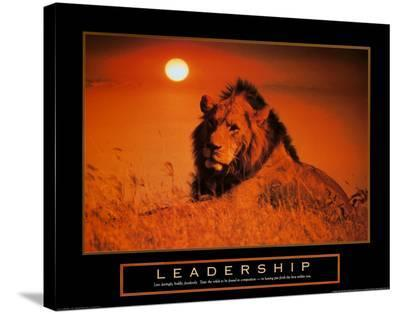 Leadership: Lion--Stretched Canvas Print
