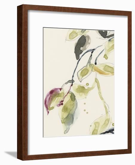 Leaf Branch Triptych I-Jennifer Goldberger-Framed Art Print