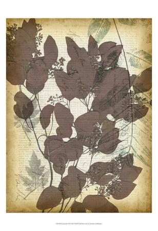 https://imgc.artprintimages.com/img/print/leaf-letters-ii_u-l-f5q3y90.jpg?p=0