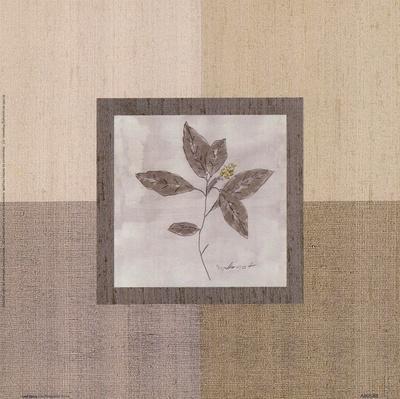 https://imgc.artprintimages.com/img/print/leaf-spray-l_u-l-f8im350.jpg?p=0