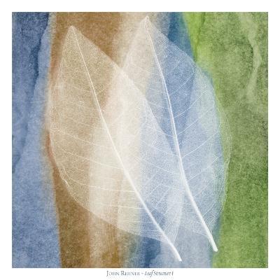 Leaf Structure I-John Rehner-Art Print