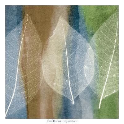 Leaf Structure II-John Rehner-Art Print