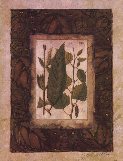 Leaf Study I-Merri Pattinian-Art Print