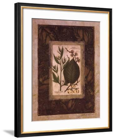 Leaf Study II-Merri Pattinian-Framed Art Print