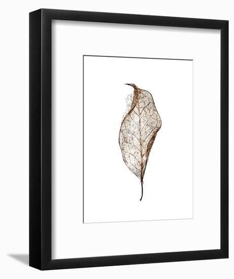 Leaf-Design Fabrikken-Framed Photographic Print