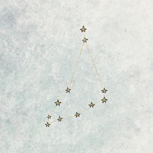 Capricorn by Leah Flores
