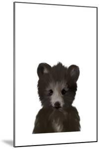 Baby Black Bear by Leah Straatsma