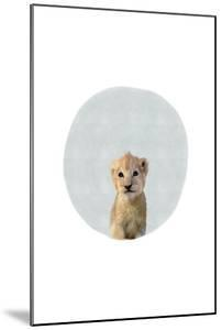 Baby Lion Circle by Leah Straatsma