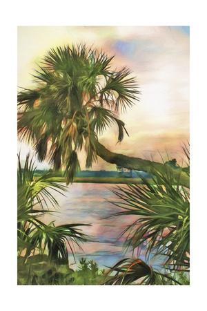 https://imgc.artprintimages.com/img/print/leaning-palm_u-l-q1bl6gr0.jpg?p=0